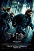 Гарри Поттер и Дары смерти: Часть 1 (2 Blu-Ray)